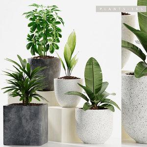 plants 165 model