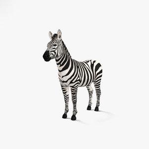 3D zebra mammal animal
