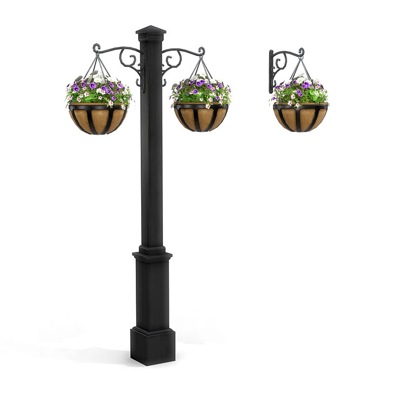 hanging potted plants model