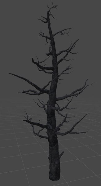 old tree 3D