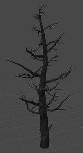 old tree 3D