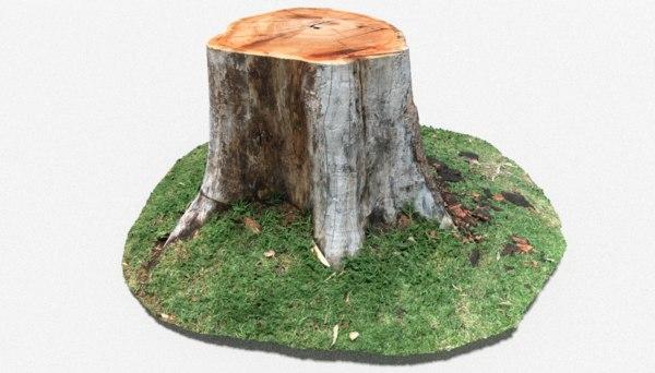 tree stump nature 3D model