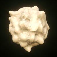 white blood cell leukocyte model