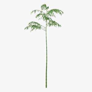 single branch bamboo tree model