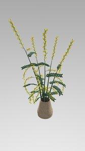 mimosa pot 3D model