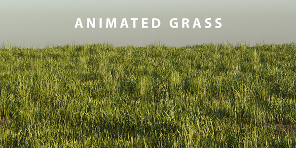 photorealistic grass pack animation 3D