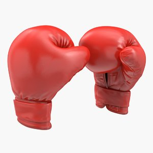 3D boxing gloves fighting pose