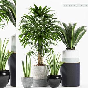 3D plant 173 model