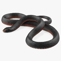 3D coiled black snake