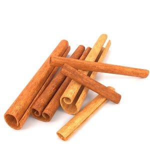 cinnamon spices 3D model