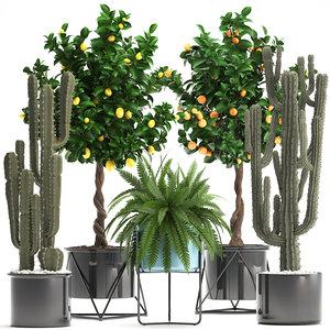 3D houseplants plants model