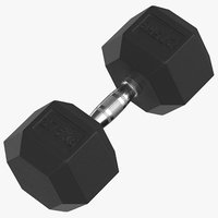 rubber dumbbell 27 5kg 3D model