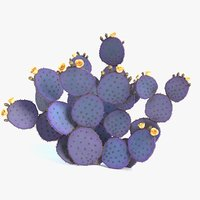 3D purple prickly pear cactus