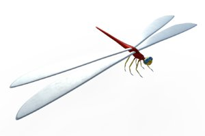 3D dragonfly fly dragon