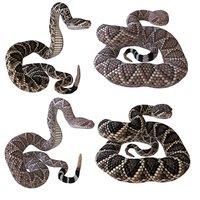 rattlesnakes reptiles 3D model