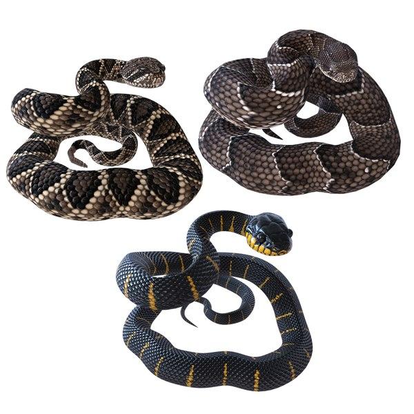 snakes reptiles 3D model