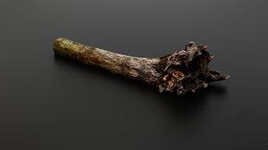 3D tree root