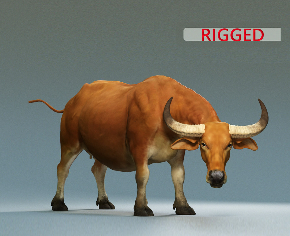 3D model buffalo modeled