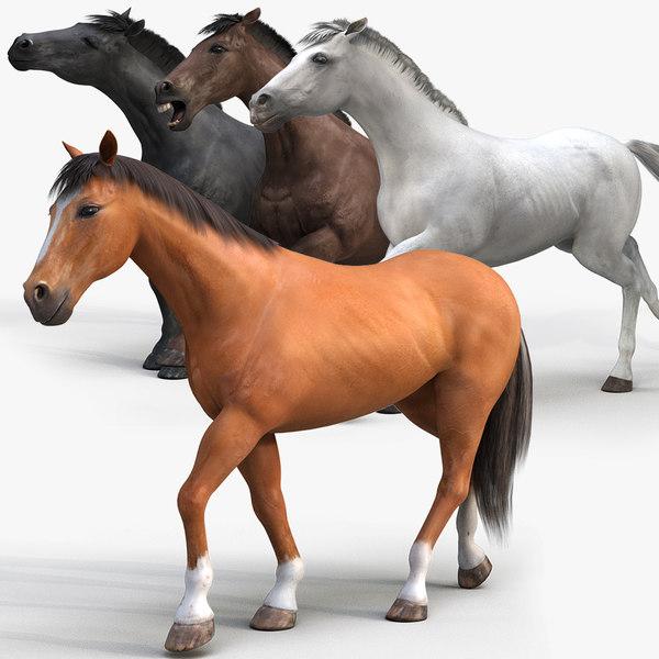 3D horse pro 4 1