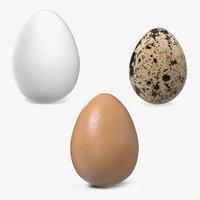 3D model eggs brown chicken