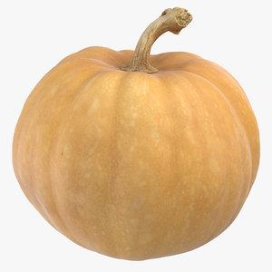 3D model pumpkin 02