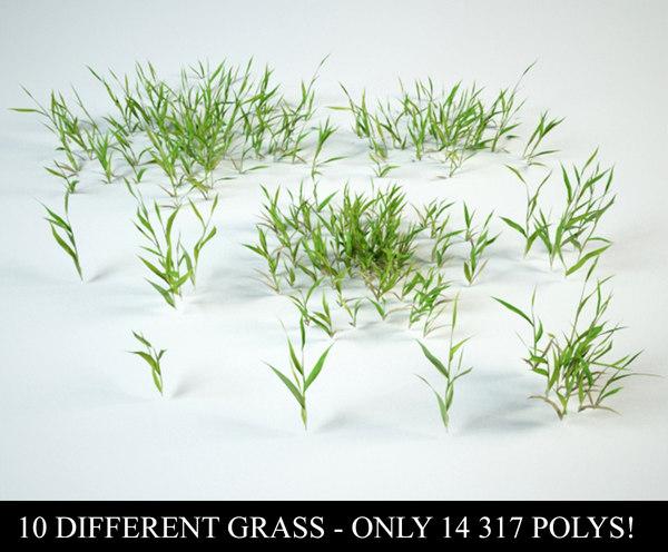 3D grass bushes