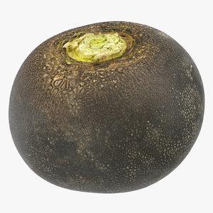 turnip black 01 3D model
