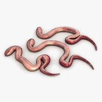 Earthworm 2