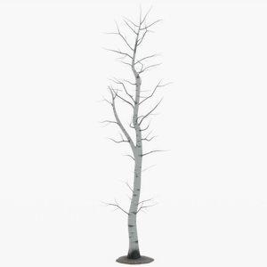 tree bare aspen 3D model