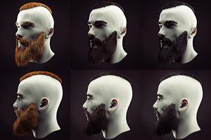 hairstyle beard 3D model