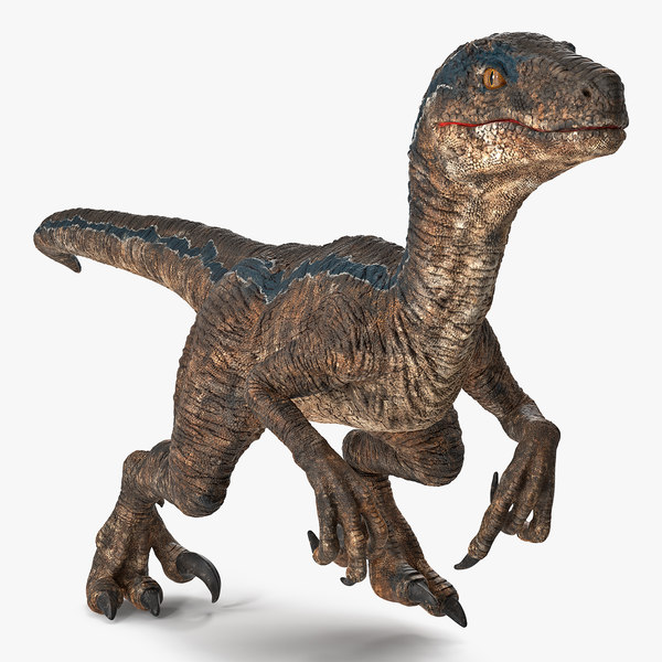 3D velociraptor walking pose