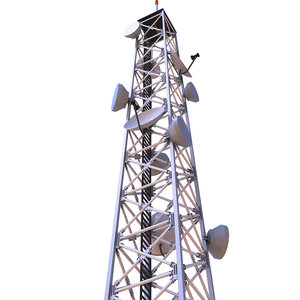 tower cellular cell 3D model