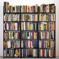 3D 474 books set shelves