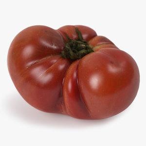 realistic tomato 02 model