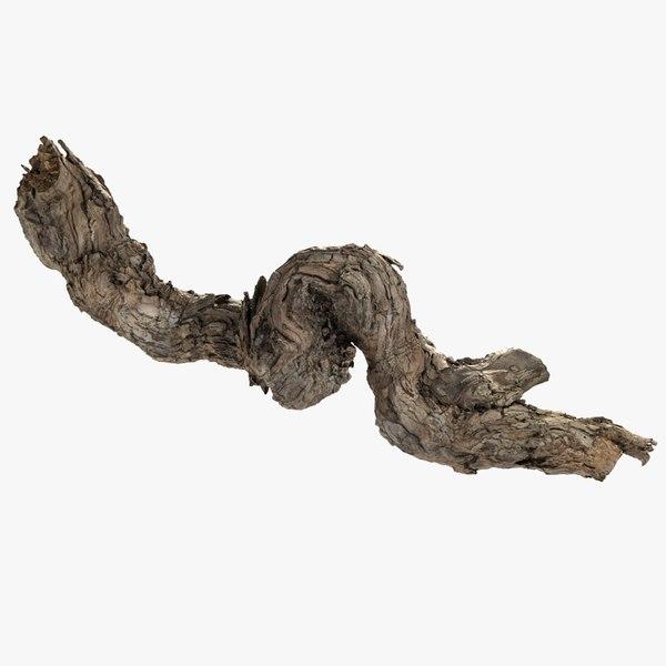 grapevine bark scanned 3D model