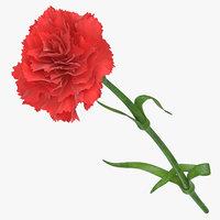 3D carnation red -