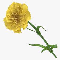 carnation yellow - 3D model