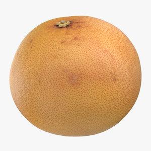 3D grapefruit 01 model