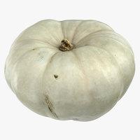 pumpkin 04 model