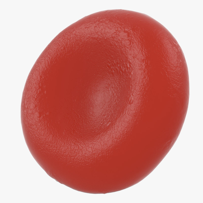 red blood cell erythrocyte 3D