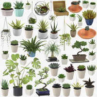 Indoor Plants Collection - 42 Models