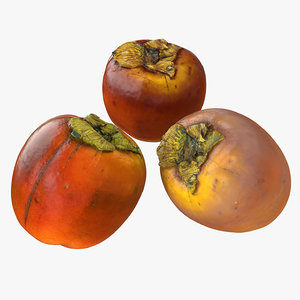 3D persimmon realistic