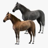 3D rigged horses model