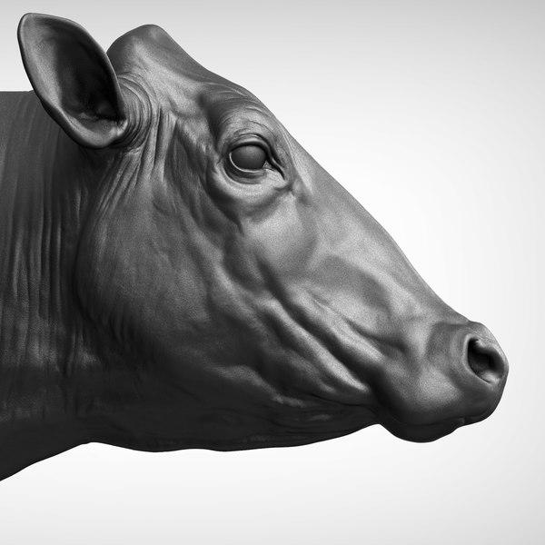 cow head 3D
