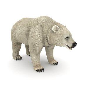 3D white bear model