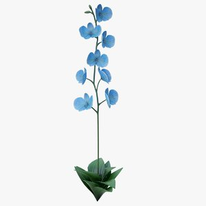 3D model realistic blue orchid