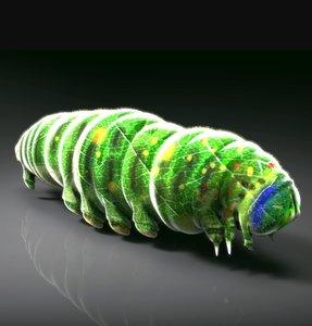 larva green 3D model