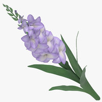 3D violet - model