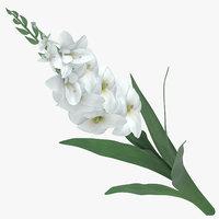 3D white -