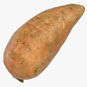 3D model sweet potato